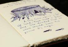 Harry Potter Audiobook - A History of Magic