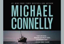 A Darkness More Than Night Audiobook free download by Michael Connelly