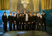 Harry Potter and Dumbledore's Army